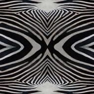 000402 zebra