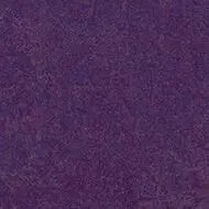 3244 purple