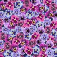 000410 pink floral