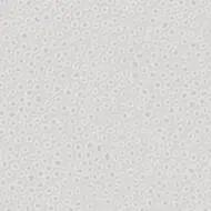 434220 white