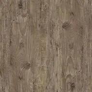 w50037 brown green pine