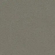 43C0814 taupe