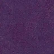 t3244 purple