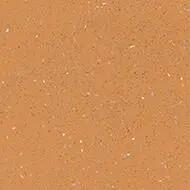 172492 orange