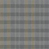 590018 Plaid Steam