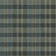 590023 Plaid Fern