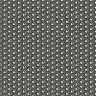 820003 Full stop Lichen
