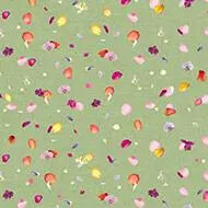 670003 Floret Orchid