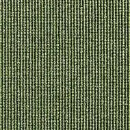 12013 Chlorophyll