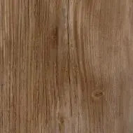 3012P Golden Pine ST
