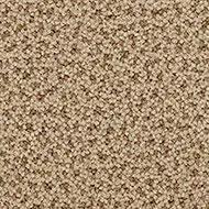 NF92196 wheatgrass