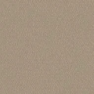 437114 Taupe