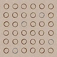 530035 Spin Biscotti