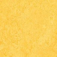333251 lemon zest