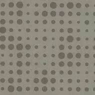 423212 gris clair