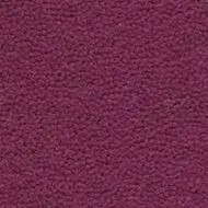 7910116 Tessera Clarity boysenberry