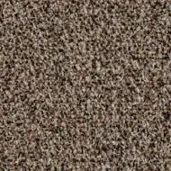 2204 Havana brown