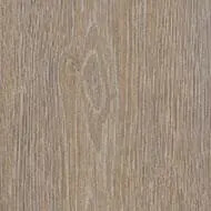 Allura steamed oak