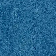 333030 blue