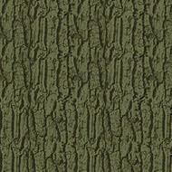 980603 Arbor moss