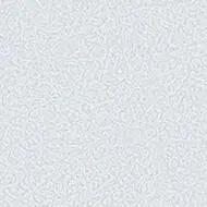 434571 grey sky