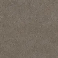9316 taupe sand