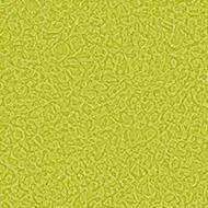 434528 lime