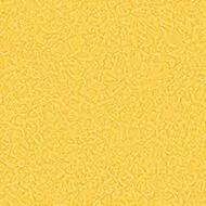 434505 canary