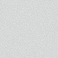434551 cloud