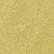3259 mustard