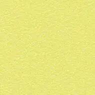 181802 lemon