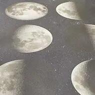 17982 moon