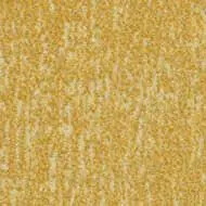 t545030 Canyon sulphur