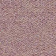 3622 wisteria