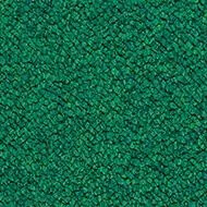3620 evergreen