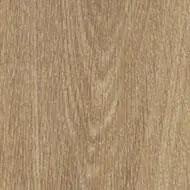 60284 natural giant oak