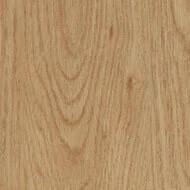 60065DR4 honey elegant oak