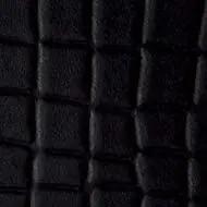 C123 black