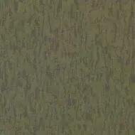 3530 moss
