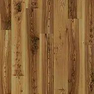 010012 light elm