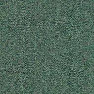 134 sargasso green