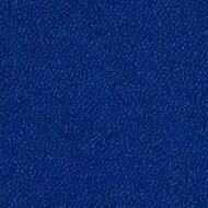 9002 dark blue