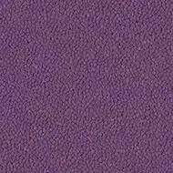 9419 violet
