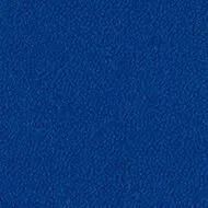 9421 bluebird