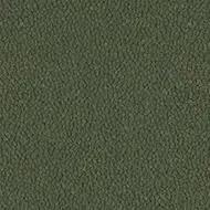 9433 lichen
