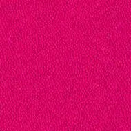 9532 douglas pink