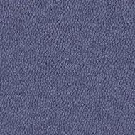 9583 hyacinth