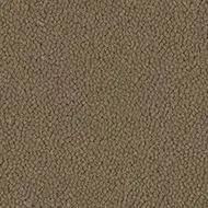 9763 flax