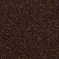 2856 chocolate
