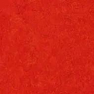 313135 scarlet